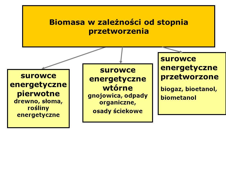 Biomasa w zależności od stopnia przetworzenia surowce energetyczne pierwotne drewno, słoma, rośliny energetyczne surowce energetyczne wtórne gnojowica