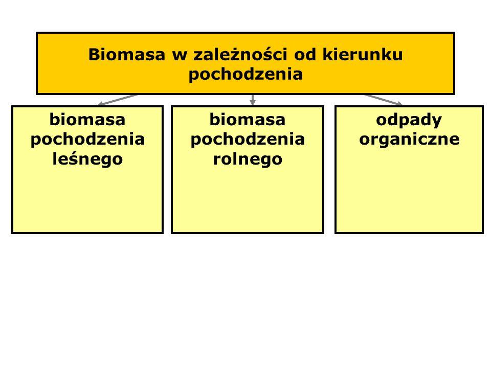 Biomasa w zależności od kierunku pochodzenia biomasa pochodzenia leśnego biomasa pochodzenia rolnego odpady organiczne