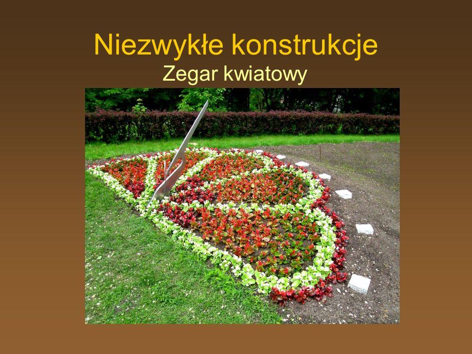 Niezwykłe konstrukcje Zegar kwiatowy