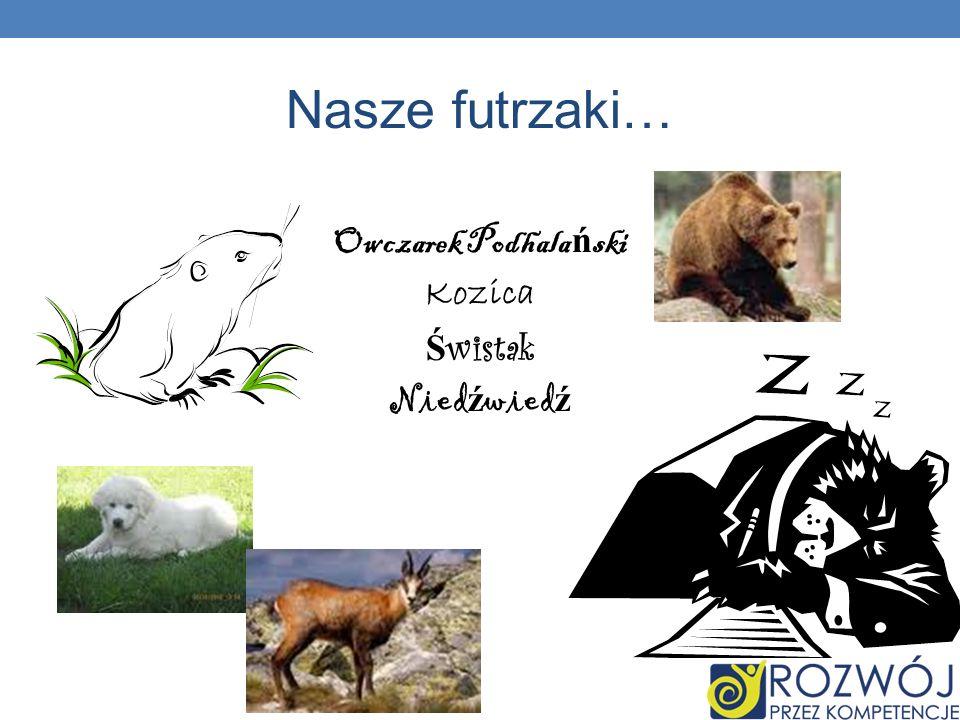 Nasze futrzaki… Owczarek Podhala ń ski Kozica Ś wistak Nied ź wied ź