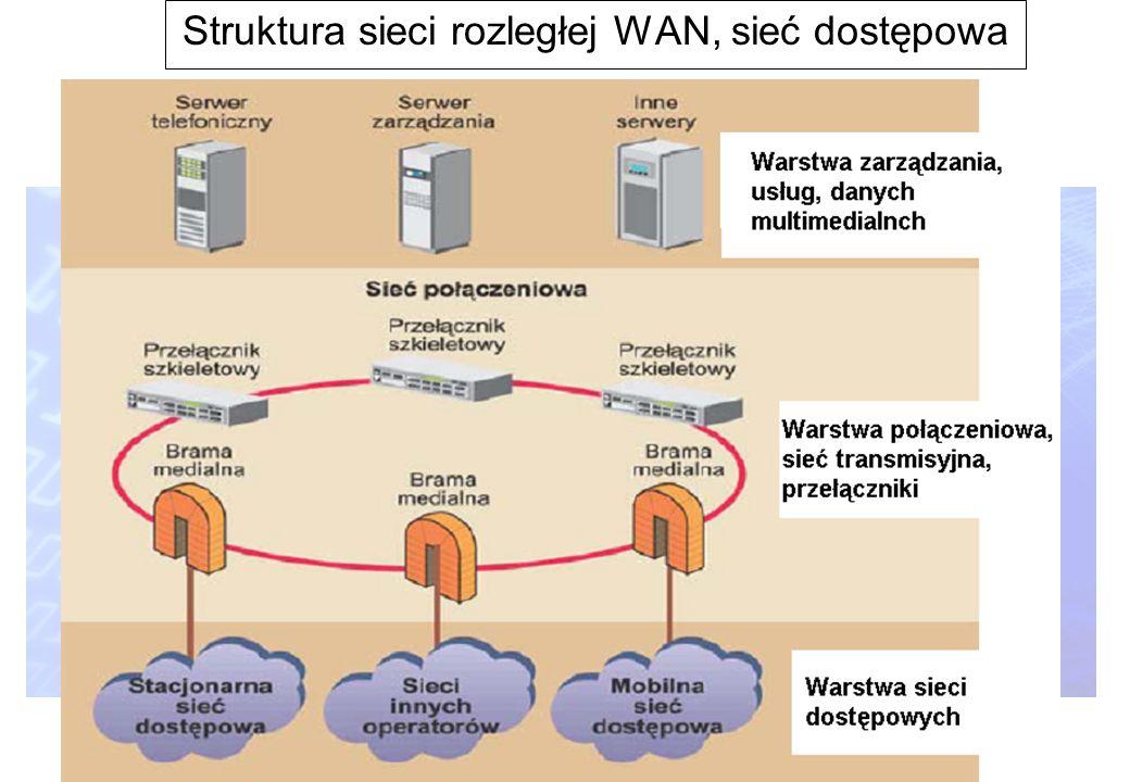 10 Struktura sieci rozległej WAN, sieć dostępowa