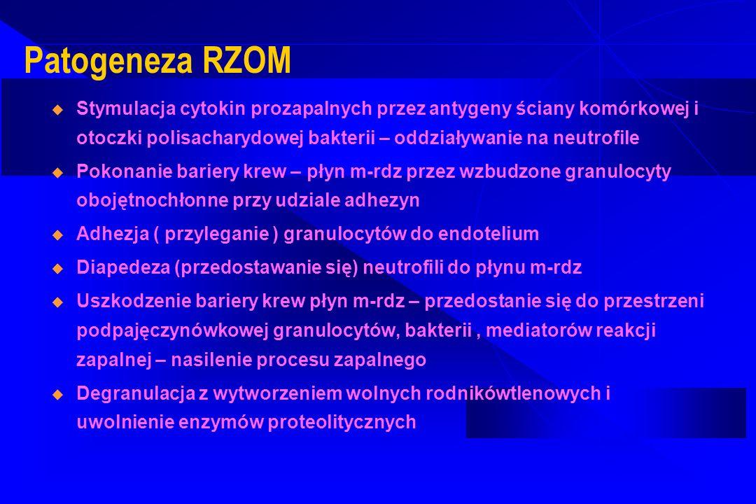 Patogeneza RZOM Stymulacja cytokin prozapalnych przez antygeny ściany komórkowej i otoczki polisacharydowej bakterii – oddziaływanie na neutrofile Pok