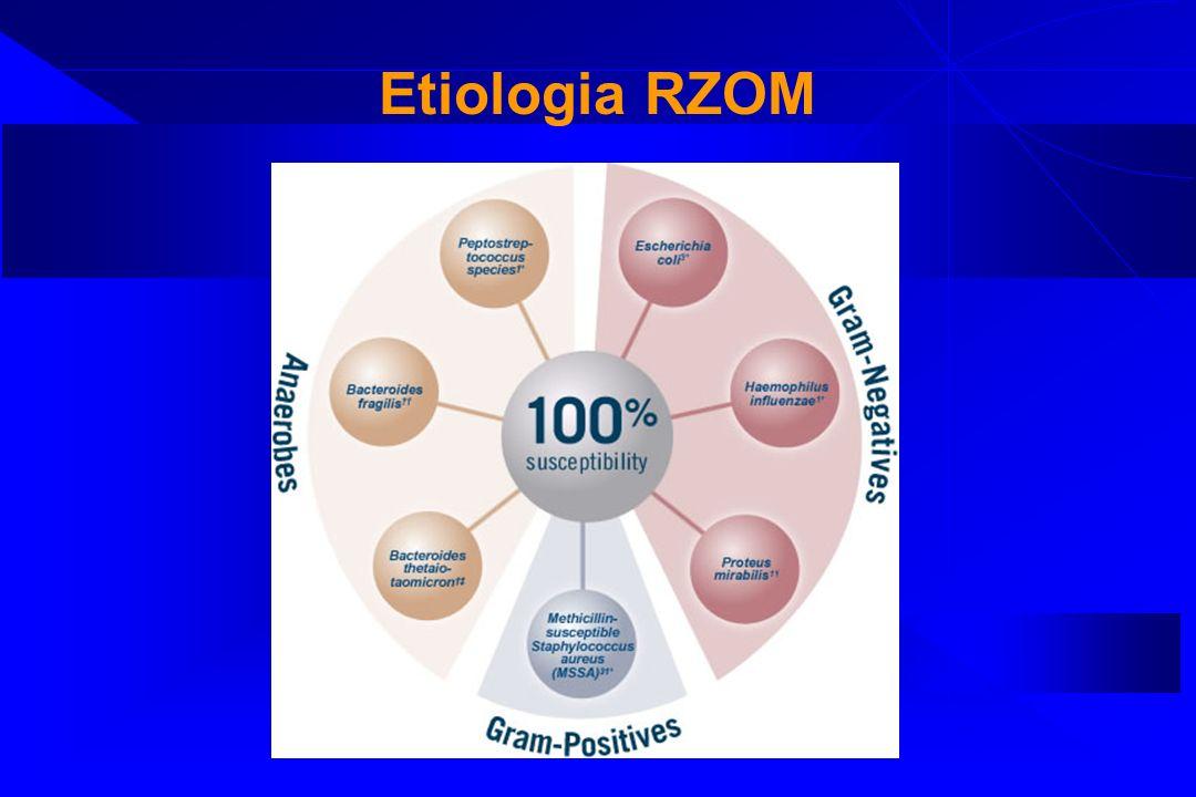 Etiologia RZOM w zależności od wieku Noworodki < 2 m-ca życia Dieci starsze > 2 mca Osoby dorosłe Bakterie Gram(-) 50 - 60% Streptococcus Pneumoniae 35%-45% Neisseria meningitdis 30% - 45% Paciorkowce grupy B 10 - 25% Neisseria meningitidis 30% - 40% Streptococcus pneumoniae 10% - 30% L.