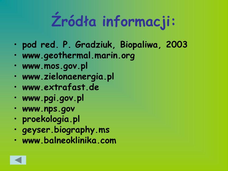 Źródła informacji: pod red. P. Gradziuk, Biopaliwa, 2003 www.geothermal.marin.org www.mos.gov.pl www.zielonaenergia.pl www.extrafast.de www.pgi.gov.pl