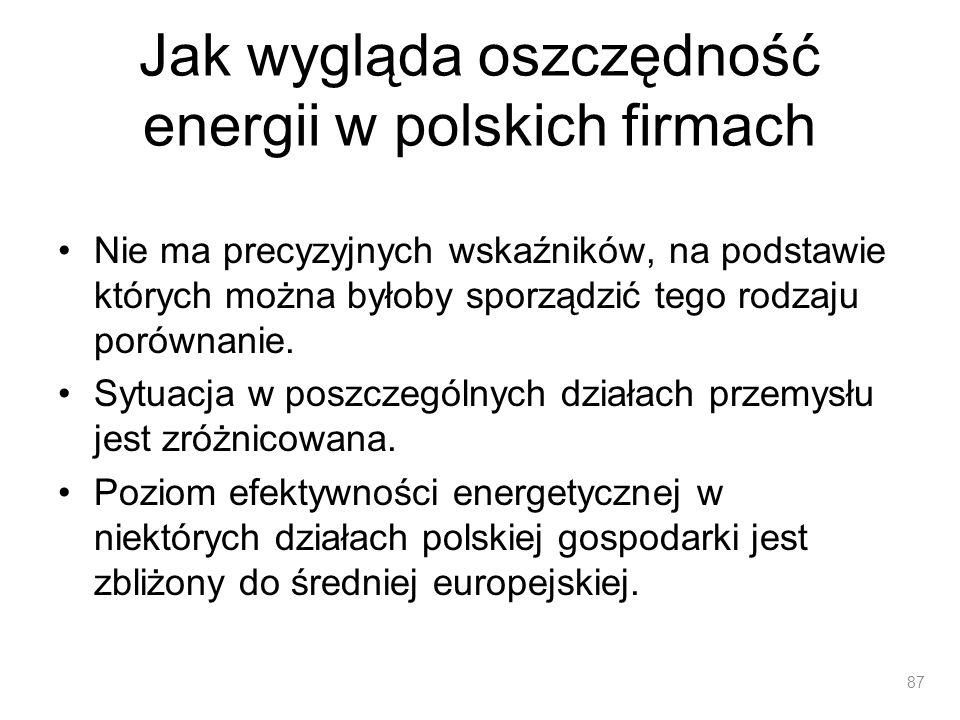Jak wygląda oszczędność energii w polskich firmach Nie ma precyzyjnych wskaźników, na podstawie których można byłoby sporządzić tego rodzaju porównani