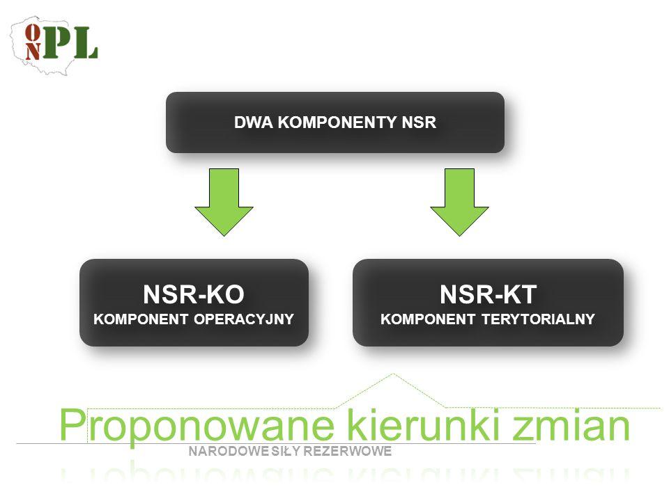 DWA KOMPONENTY NSR NSR-KO KOMPONENT OPERACYJNY określony jako tzw.