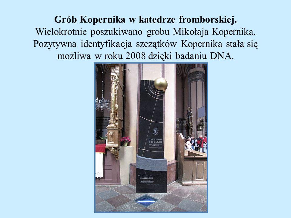 Grób Kopernika w katedrze fromborskiej. Wielokrotnie poszukiwano grobu Mikołaja Kopernika. Pozytywna identyfikacja szczątków Kopernika stała się możli
