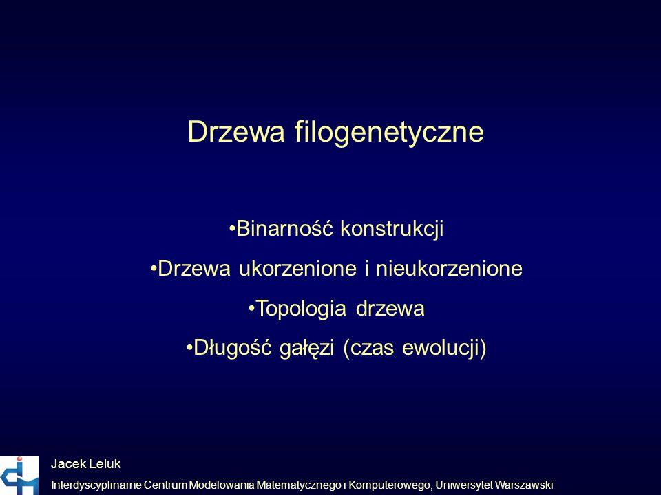 Jacek Leluk Interdyscyplinarne Centrum Modelowania Matematycznego i Komputerowego, Uniwersytet Warszawski Drzewa filogenetyczne Binarność konstrukcji