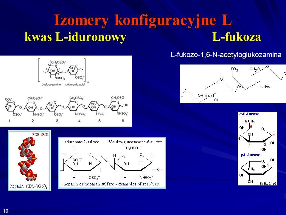 Izomery konfiguracyjne L kwas L-iduronowy L-fukoza L-fukozo-1,6-N-acetyloglukozamina 10