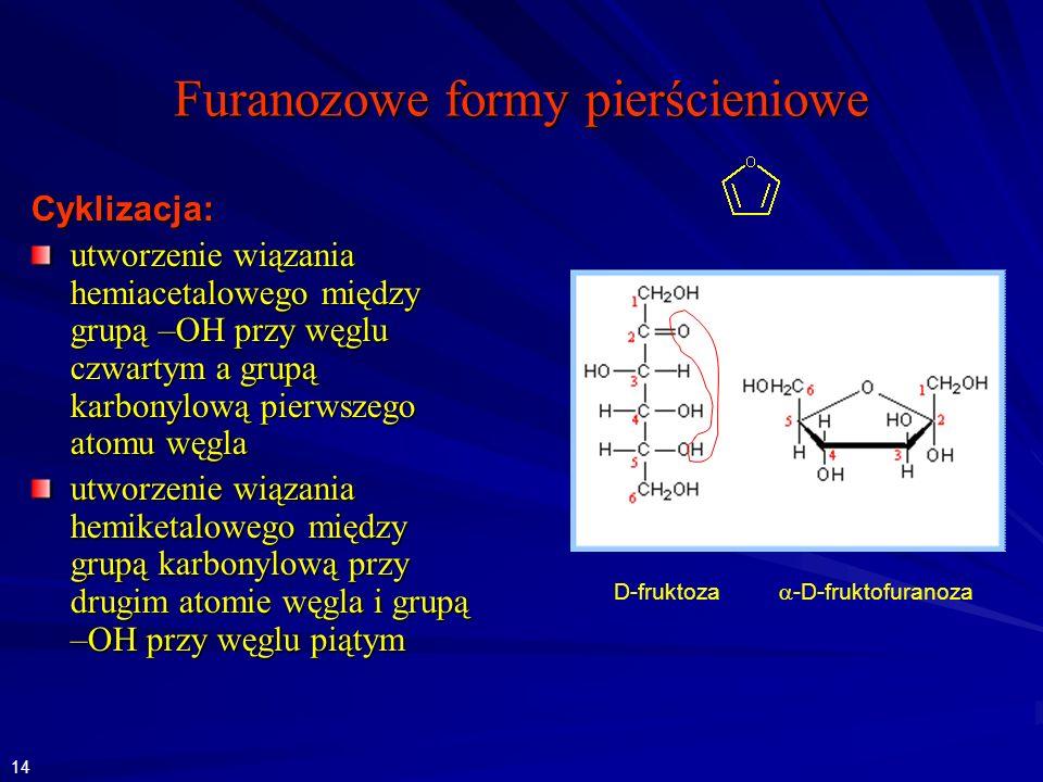 Furanozowe formy pierścieniowe D-fruktoza -D-fruktofuranoza Cyklizacja: utworzenie wiązania hemiacetalowego między grupą –OH przy węglu czwartym a grupą karbonylową pierwszego atomu węgla utworzenie wiązania hemiketalowego między grupą karbonylową przy drugim atomie węgla i grupą –OH przy węglu piątym 14