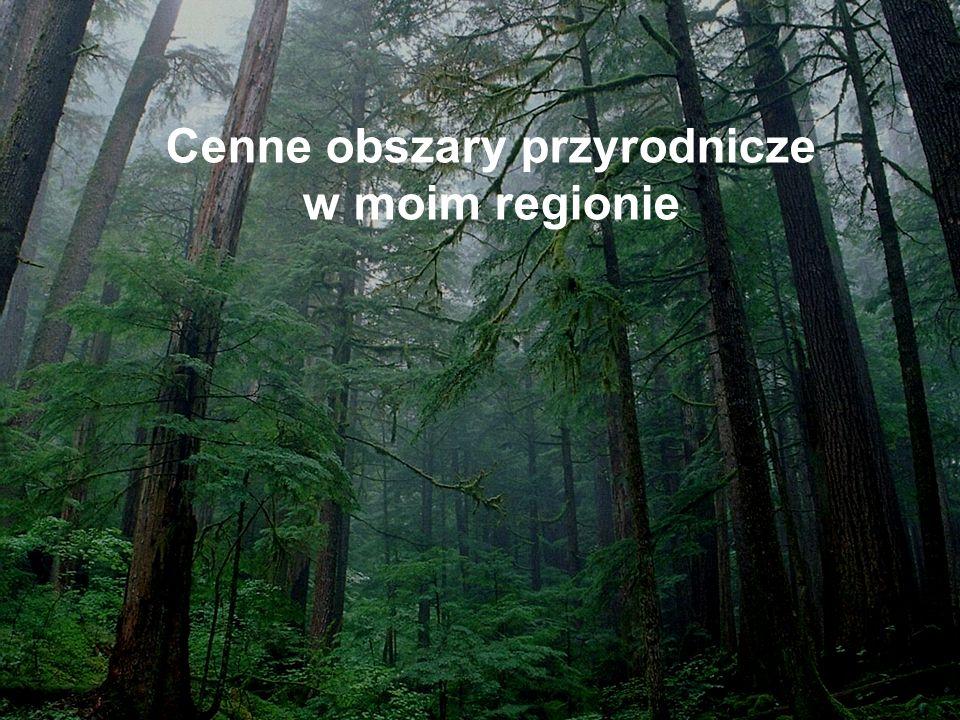 Cenne obszary przyrodnicze w moim regionie