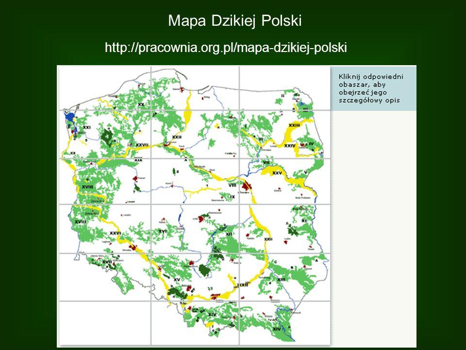 Mapa Dzikiej Polski http://pracownia.org.pl/mapa-dzikiej-polski