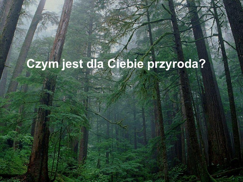 Co mogę zrobić dla przyrody?