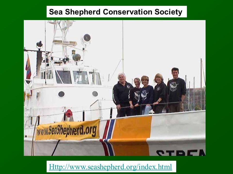 Http://www.seashepherd.org/index.html