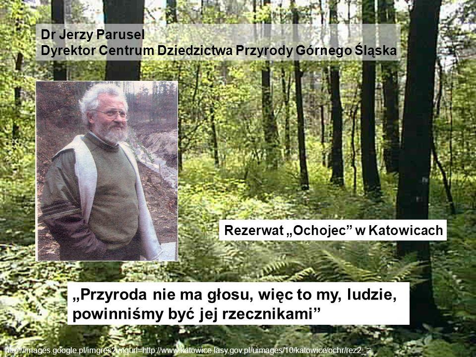 Dr Jerzy Parusel Dyrektor Centrum Dziedzictwa Przyrody Górnego Śląska http://images.google.pl/imgres?imgurl=http://www.katowice.lasy.gov.pl/uimages/10
