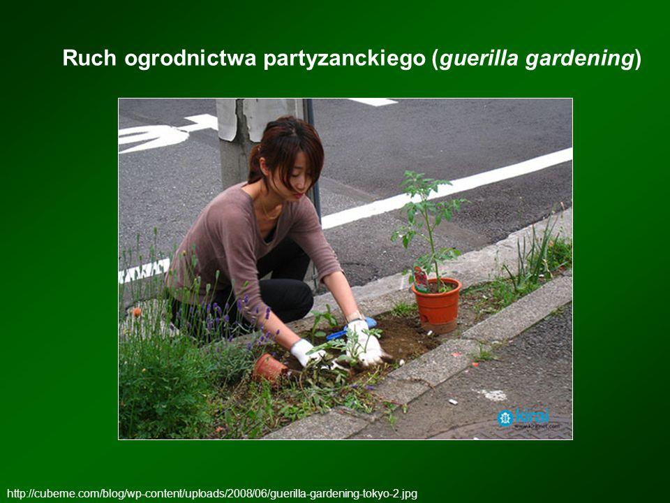 Ruch ogrodnictwa partyzanckiego (guerilla gardening) http://cubeme.com/blog/wp-content/uploads/2008/06/guerilla-gardening-tokyo-2.jpg