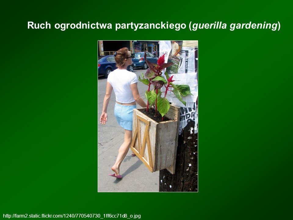 Ruch ogrodnictwa partyzanckiego (guerilla gardening) http://farm2.static.flickr.com/1240/770540730_1ff6cc71d8_o.jpg