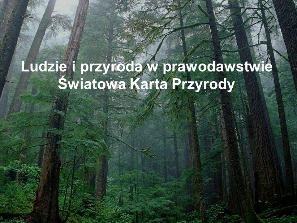 Beata Tyszkiewicz Ja nie wspieram swoim głosem obrońców doliny Rospudy, ja czuję się obrońcą doliny Rospudy