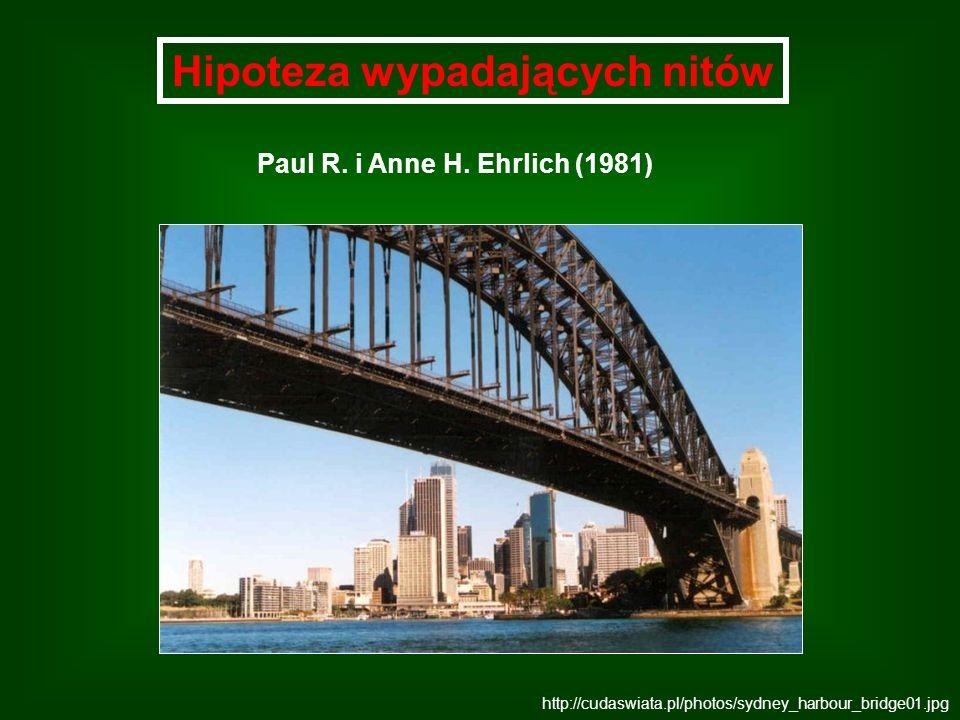 Hipoteza wypadających nitów http://cudaswiata.pl/photos/sydney_harbour_bridge01.jpg