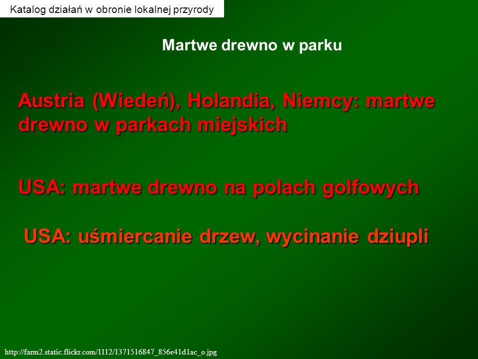 Katalog działań w obronie lokalnej przyrody http://farm2.static.flickr.com/1112/1371516847_856e41d1ac_o.jpg Martwe drewno w parku Austria (Wiedeń), Ho