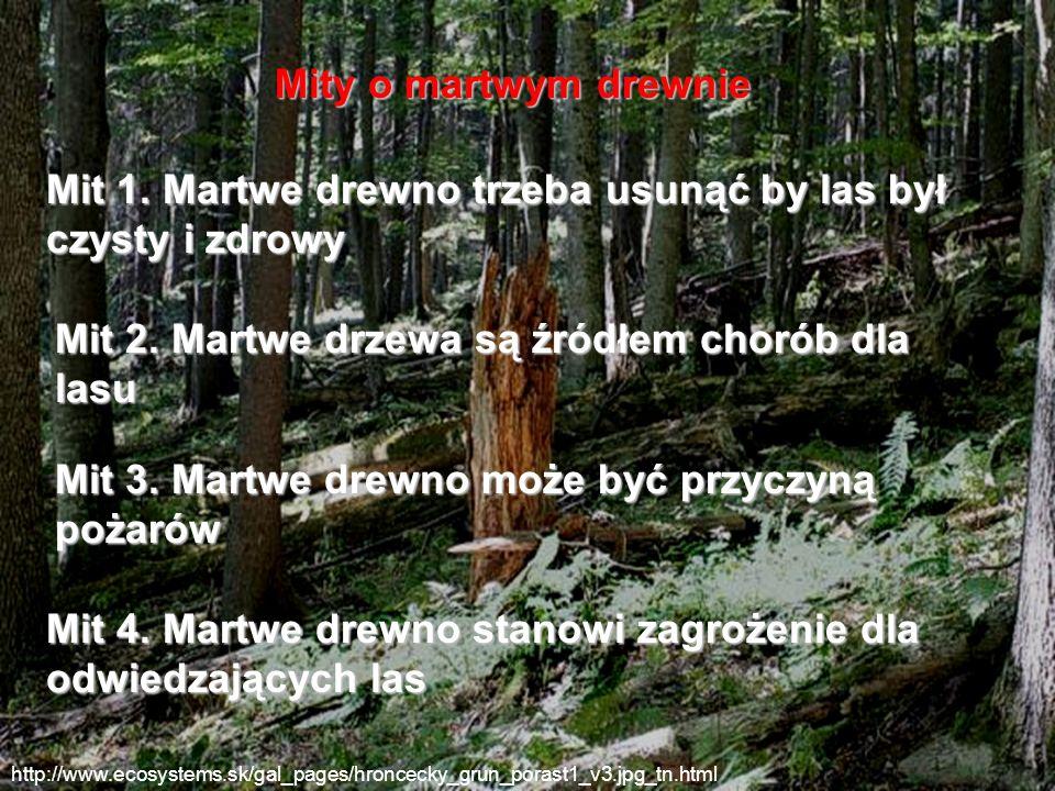 http://www.ecosystems.sk/gal_pages/hroncecky_grun_porast1_v3.jpg_tn.html Mity o martwym drewnie Mit 1. Martwe drewno trzeba usunąć by las był czysty i