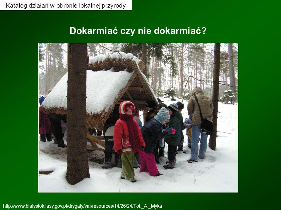 Dokarmiać czy nie dokarmiać? http://www.bialystok.lasy.gov.pl/drygaly/var/resources/14/26/24/Fot._A._Myka