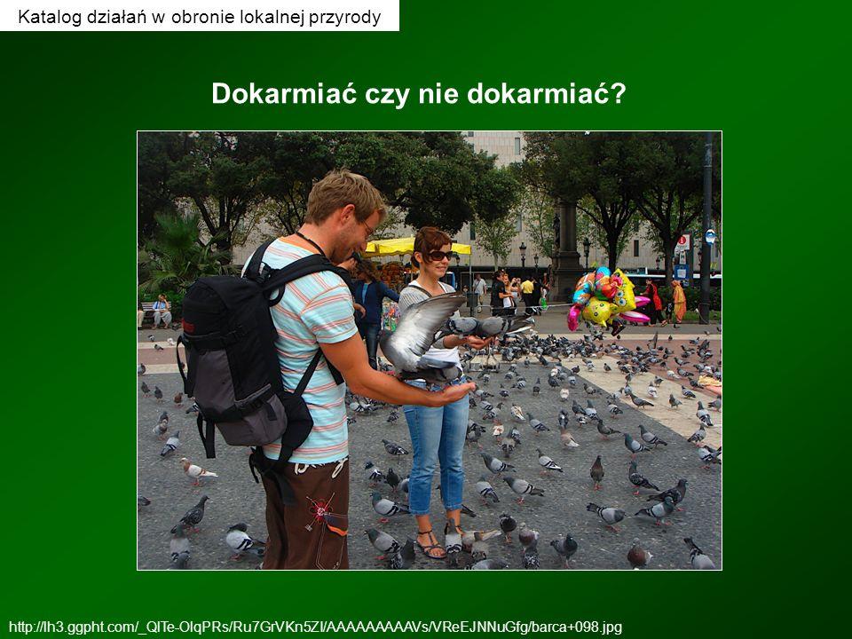 Katalog działań w obronie lokalnej przyrody Dokarmiać czy nie dokarmiać? http://lh3.ggpht.com/_QlTe-OlqPRs/Ru7GrVKn5ZI/AAAAAAAAAVs/VReEJNNuGfg/barca+0