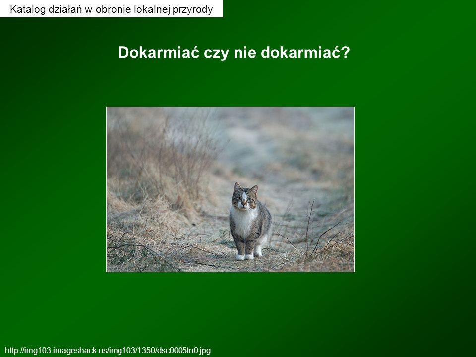 Katalog działań w obronie lokalnej przyrody Dokarmiać czy nie dokarmiać? http://img103.imageshack.us/img103/1350/dsc0005tn0.jpg