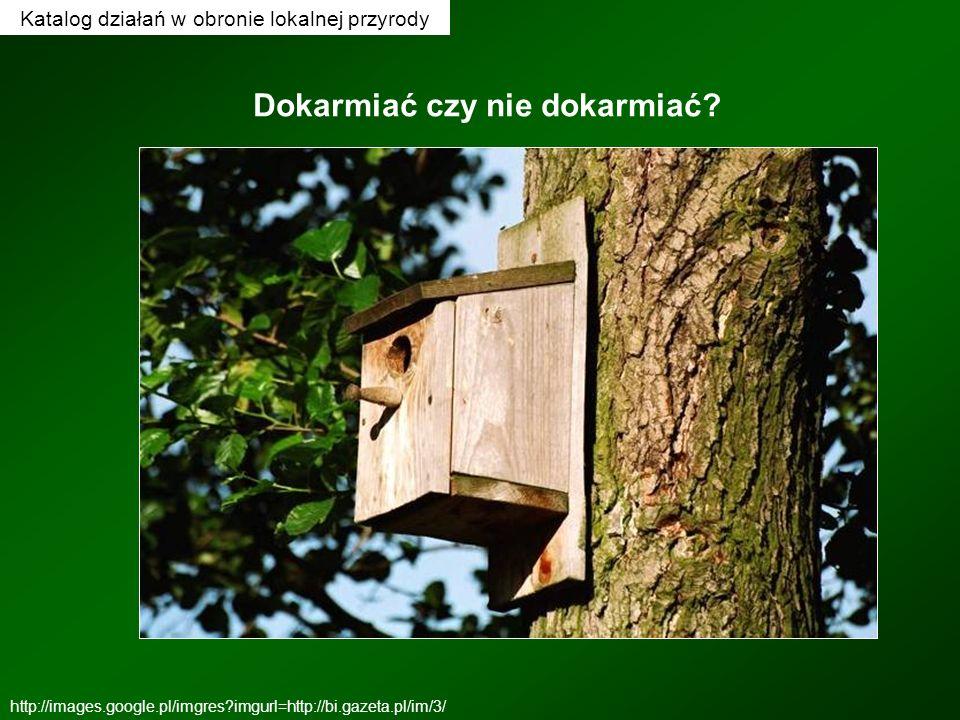 Katalog działań w obronie lokalnej przyrody Dokarmiać czy nie dokarmiać? http://images.google.pl/imgres?imgurl=http://bi.gazeta.pl/im/3/