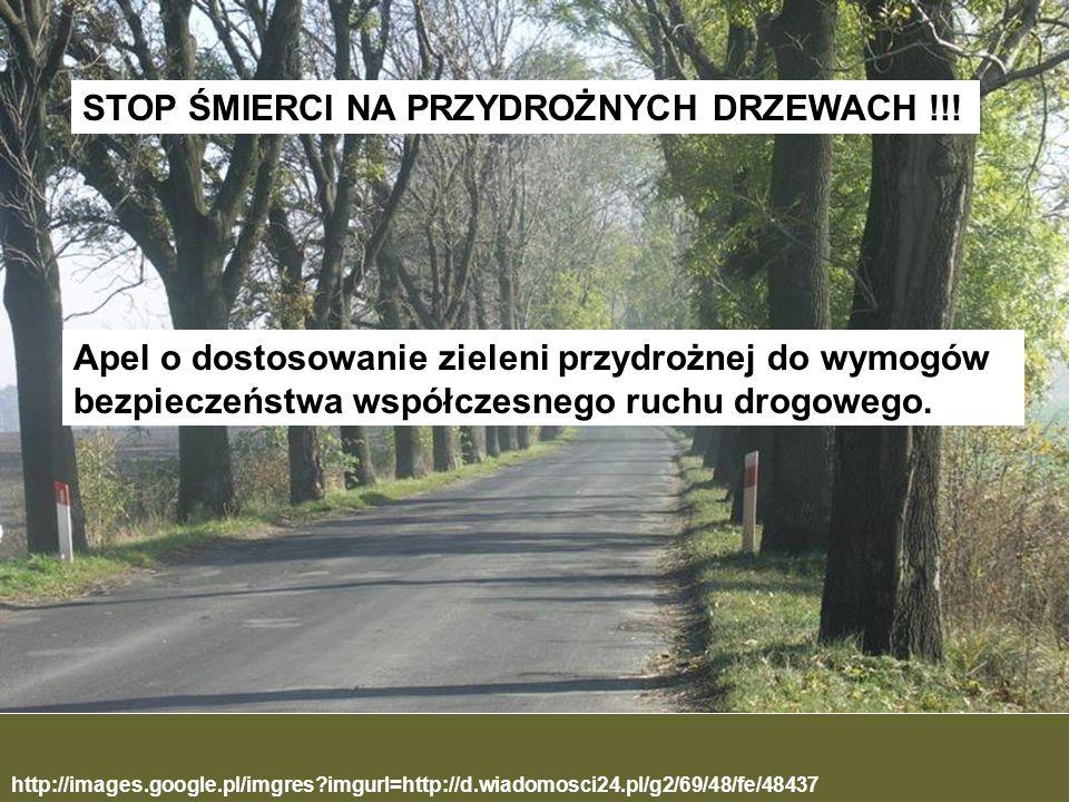 http://images.google.pl/imgres?imgurl=http://d.wiadomosci24.pl/g2/69/48/fe/48437 STOP ŚMIERCI NA PRZYDROŻNYCH DRZEWACH !!! Apel o dostosowanie zieleni