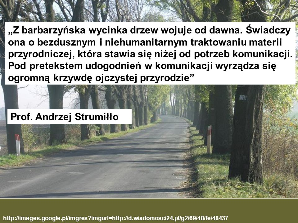 http://images.google.pl/imgres?imgurl=http://d.wiadomosci24.pl/g2/69/48/fe/48437 Z barbarzyńska wycinka drzew wojuje od dawna. Świadczy ona o bezduszn