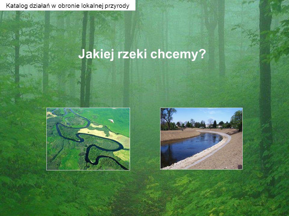 Jakiej rzeki chcemy? Katalog działań w obronie lokalnej przyrody