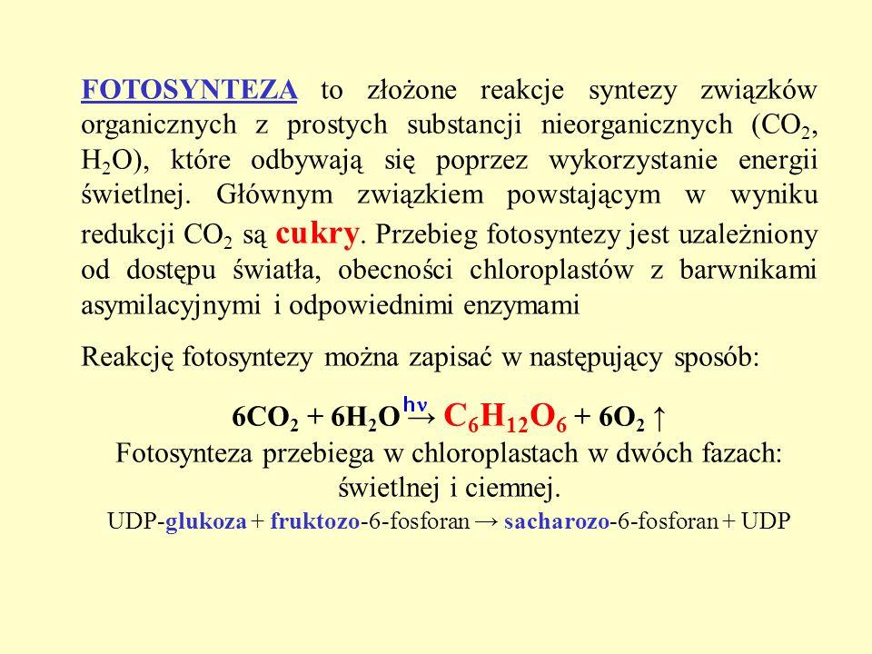 FOTOSYNTEZA to złożone reakcje syntezy związków organicznych z prostych substancji nieorganicznych (CO 2, H 2 O), które odbywają się poprzez wykorzyst