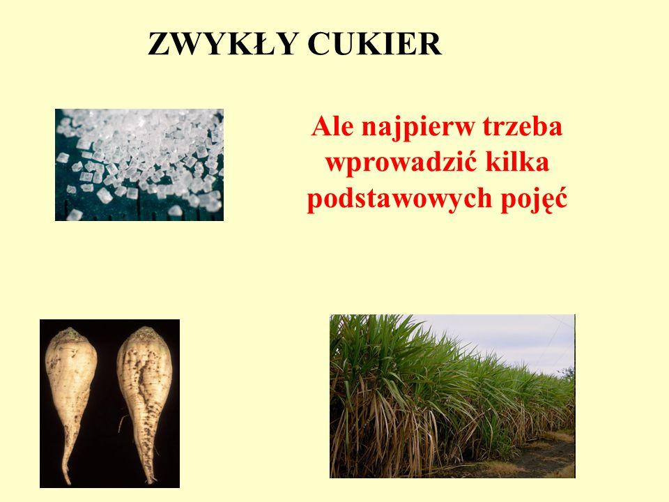 Galeria Andrzeja Mleczki Myślę, że będziemy mogli się porozumieć Mimo bardzo dużej różnicy wieku i unikniemy następującej sytuacji …..