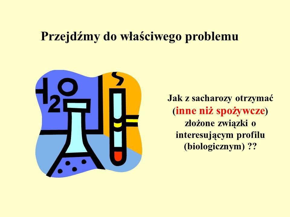 Przejdźmy do właściwego problemu Jak z sacharozy otrzymać ( inne niż spożywcze ) złożone związki o interesującym profilu (biologicznym) ??