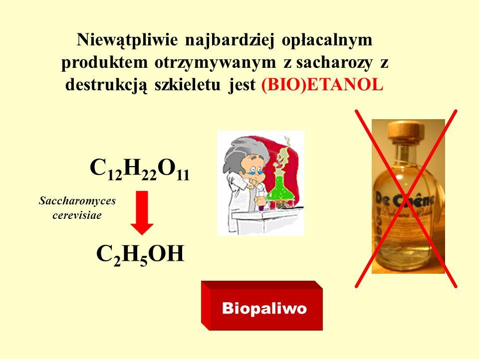 Niewątpliwie najbardziej opłacalnym produktem otrzymywanym z sacharozy z destrukcją szkieletu jest (BIO)ETANOL Biopaliwo C 12 H 22 O 11 C 2 H 5 OH Sac