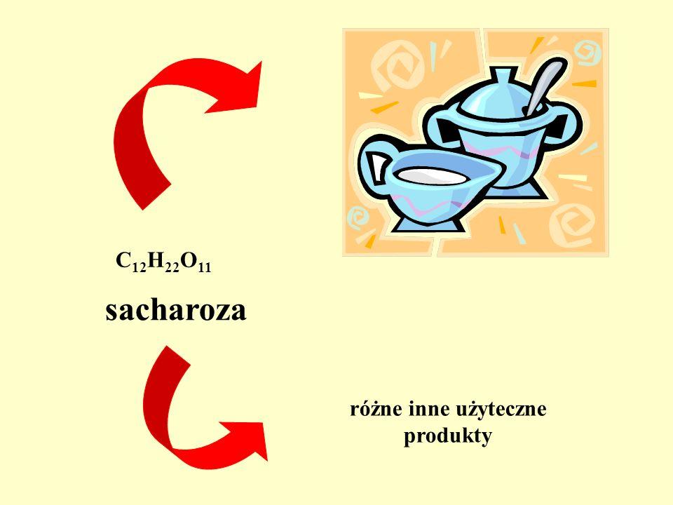 C 12 H 22 O 11 sacharoza różne inne użyteczne produkty