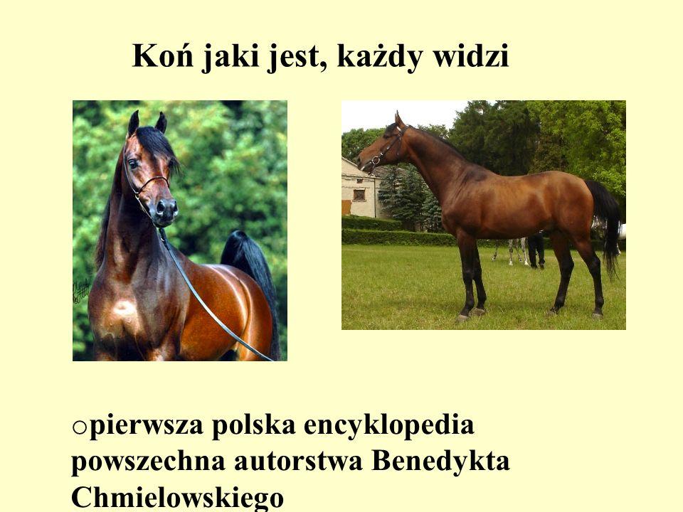 Koń jaki jest, każdy widzi o pierwsza polska encyklopedia powszechna autorstwa Benedykta Chmielowskiego
