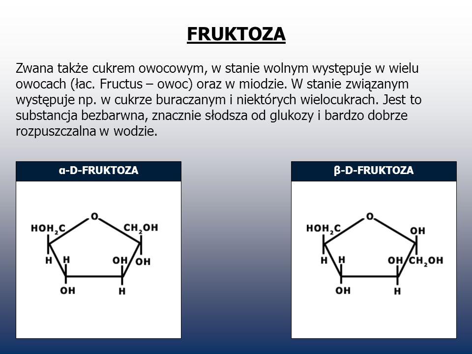 FRUKTOZA Zwana także cukrem owocowym, w stanie wolnym występuje w wielu owocach (łac. Fructus – owoc) oraz w miodzie. W stanie związanym występuje np.