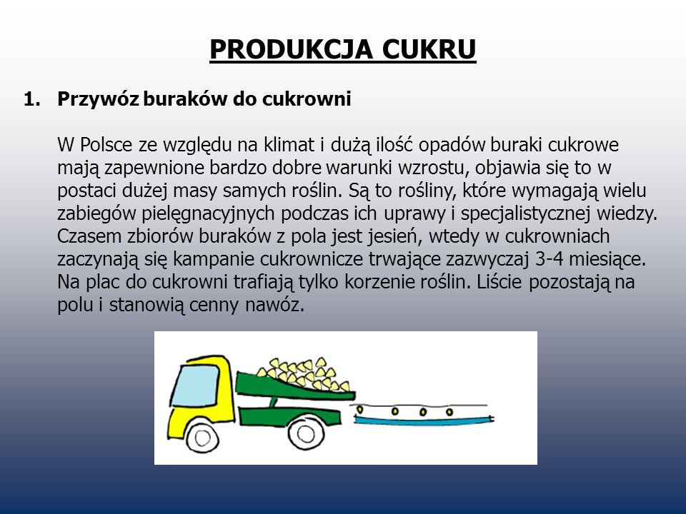 PRODUKCJA CUKRU 1.Przywóz buraków do cukrowni W Polsce ze względu na klimat i dużą ilość opadów buraki cukrowe mają zapewnione bardzo dobre warunki wz