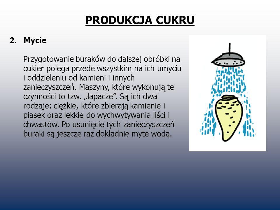 PRODUKCJA CUKRU 3.
