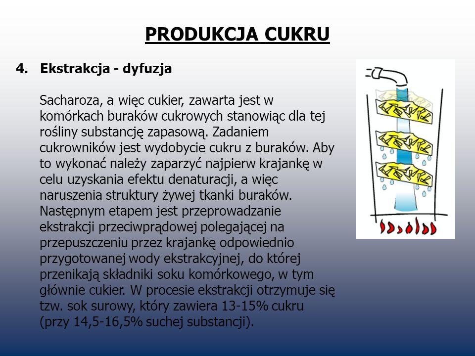 PRODUKCJA CUKRU 4. Ekstrakcja - dyfuzja Sacharoza, a więc cukier, zawarta jest w komórkach buraków cukrowych stanowiąc dla tej rośliny substancję zapa