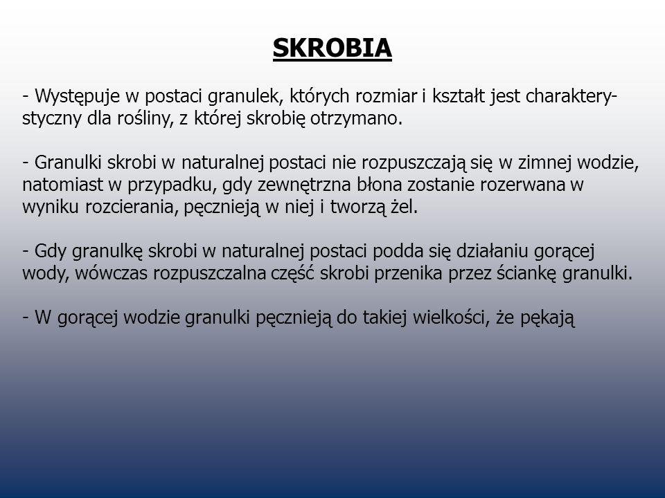 SKROBIA - Występuje w postaci granulek, których rozmiar i kształt jest charaktery- styczny dla rośliny, z której skrobię otrzymano. - Granulki skrobi