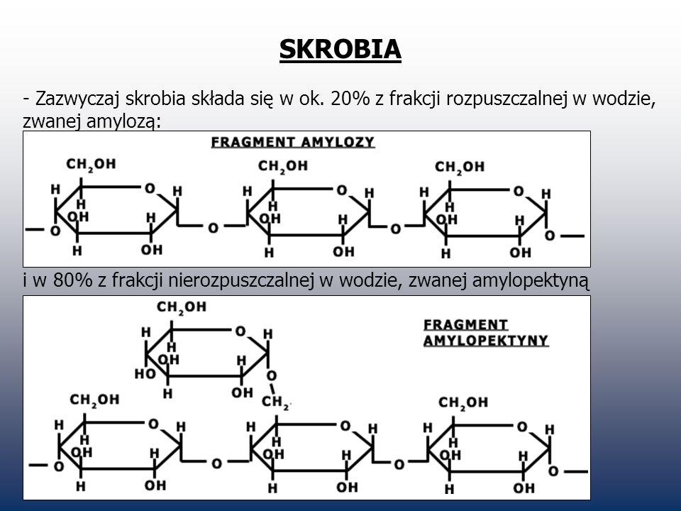 SKROBIA - Zazwyczaj skrobia składa się w ok. 20% z frakcji rozpuszczalnej w wodzie, zwanej amylozą: i w 80% z frakcji nierozpuszczalnej w wodzie, zwan