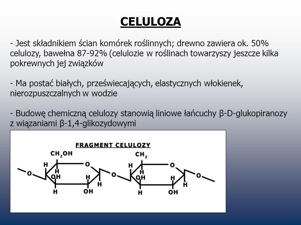 CELULOZA - Jest składnikiem ścian komórek roślinnych; drewno zawiera ok. 50% celulozy, bawełna 87-92% (celulozie w roślinach towarzyszy jeszcze kilka