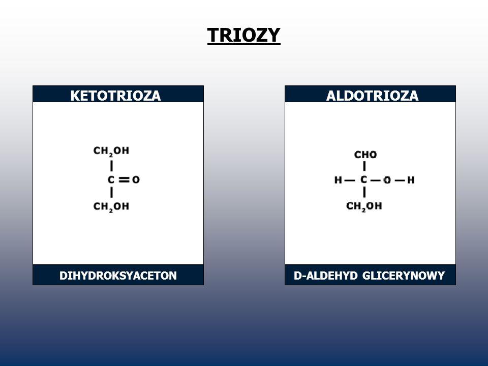 TRIOZY KETOTRIOZAALDOTRIOZA DIHYDROKSYACETOND-ALDEHYD GLICERYNOWY