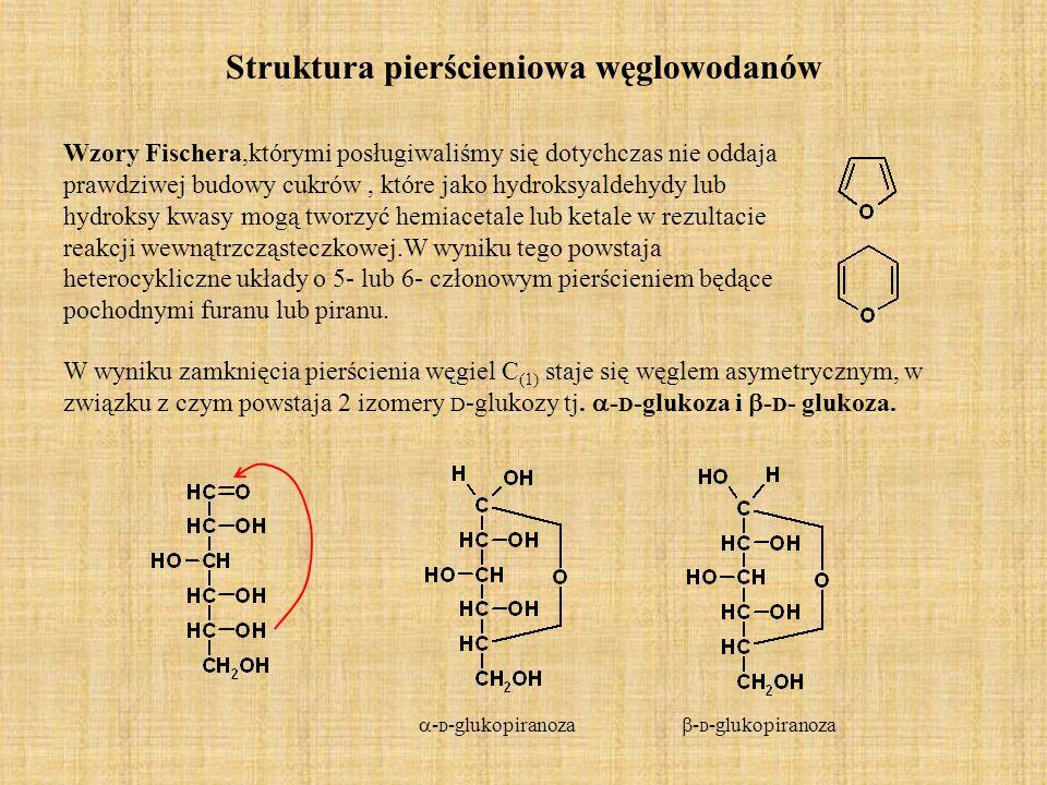 forma łańcuchowa i pierścieniowa D -glukoza D -fruktoza - D -glukopiranoza - D -fruktofuranoza
