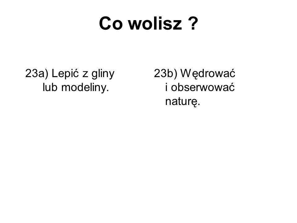 Co wolisz ? 23a) Lepić z gliny lub modeliny. 23b) Wędrować i obserwować naturę.