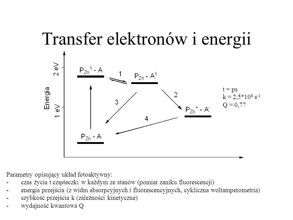 Transfer elektronów i energii Parametry opisujący układ fotoaktywny: -czas życia t cząsteczki w każdym ze stanów (pomiar zaniku fluorescencji) -energi