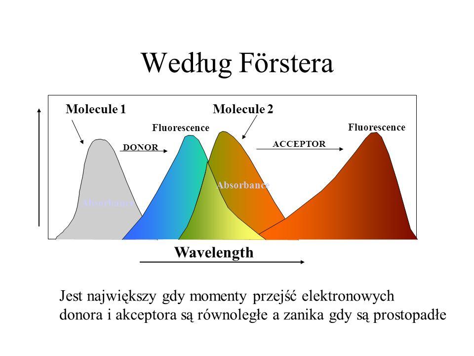 Według Förstera Wavelength Absorbance DONOR Absorbance Fluorescence ACCEPTOR Molecule 1Molecule 2 Jest największy gdy momenty przejść elektronowych do